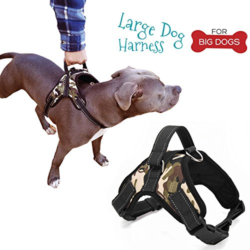 Large Dog Harness And Free Leash Best Dog Harness With